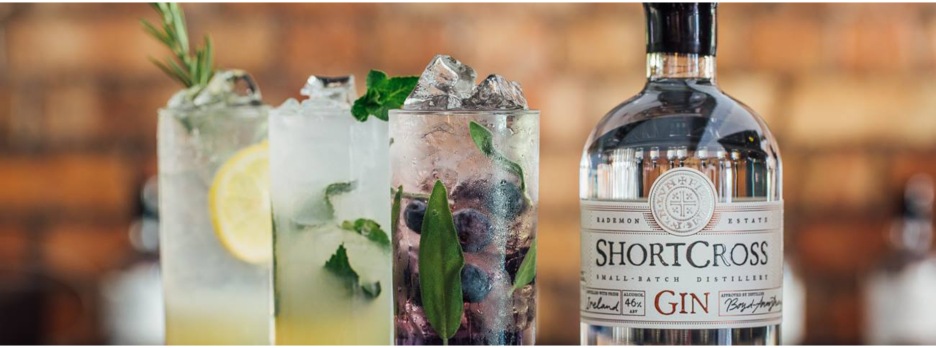 Craft Gin Distilled in Ireland | Shortcross Premium Gin