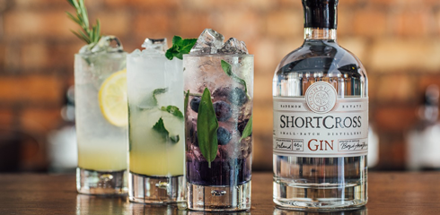 Craft Gin Distilled in Ireland